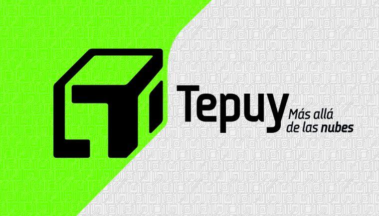 Identidad visual para sistemas de almacenamiento Tepuy (imagen del proyecto)