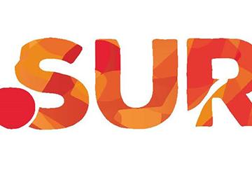 Diseño de marca para el dominio .SUR